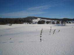 Plateau de Retord